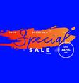 special sale offer banner brush vector image