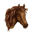 Brown graceful sad horse portrait vector image vector image