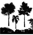 set of tree silhouette vector image vector image