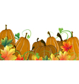 Pumpkins and autumn leaves vector image