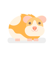 flat style of hamster vector image