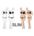 slimness and weight loss vector image