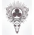 Deer skull with Celtic triskel vector image