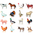 farm animals vector image