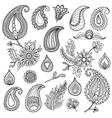 Hand sketched vintage elements like leaves vector image