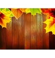 Autumn leaves over old wooden plus EPS10 vector image