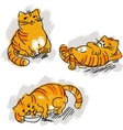 Collection of cute red cat set vector image