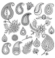 Hand sketched vintage elements like leaves vector image