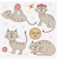 Cute cats in different poses set vector image
