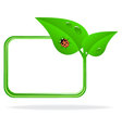 ladybug on green leaf vector image vector image