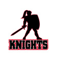 Knight with sword and shield vector image