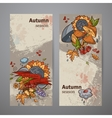 Set vertical banners of colored autumn doodle vector image vector image