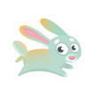 255rabbit vector image