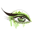 Beautiful woman eye vector image