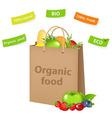 Bag With Organic Food vector image