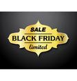 Black Friday sale card design vector image