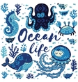Ocean life Lovely card with cute animals in vector image