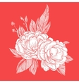 Peony bouquet background birthday card vector image