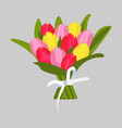 bouquet of multicolored tulips vector image