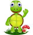 friendly turtle cartoon vector image