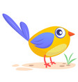 258bird vector image