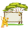 A young tiger and a bee near an empty signage vector image