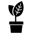 Young plant in pot vector image vector image