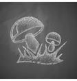mushrooms icon vector image