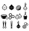 Onion spring onions icons set vector image
