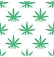 cannabis or marijuana leaves seamless pattern vector image