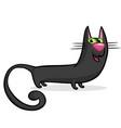 halloween witch cat cartoon vector image