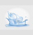 closeup of water splash on vector image