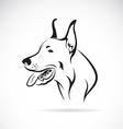Dog Great Dane vector image