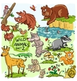Wild animals hand drawn collection part 2 vector image