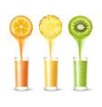 pineapple kumquat kiwi juice vector image