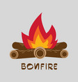bonfire with firewood vector image