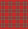 background in scottish cage vector image