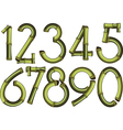bamboo numbers vector image vector image