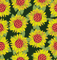 Hand drawn sunflower flower seamless background vector image