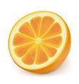 photorealistic orange slice vector image