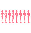 pregnancy stages side view vector image