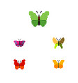 flat monarch set of monarch beauty fly archippus vector image