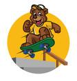 happy bear kid playing skateboard vector image