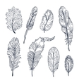 Sketched Feathers collection vector image vector image
