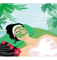 Relax in a tropical spa vector image