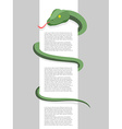 Snake wraps around With space for text Re vector image