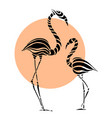 abstract silhouettes of pink flamingo vector image