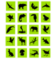 animal silhouette green icons vector image vector image