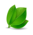 ecology concept green leaves vector image