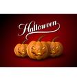 Halloween Pumpkin Jack Lanterns vector image